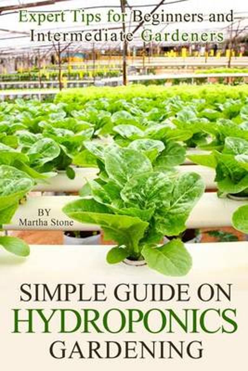 Simple Guide on Hydroponics Gardening