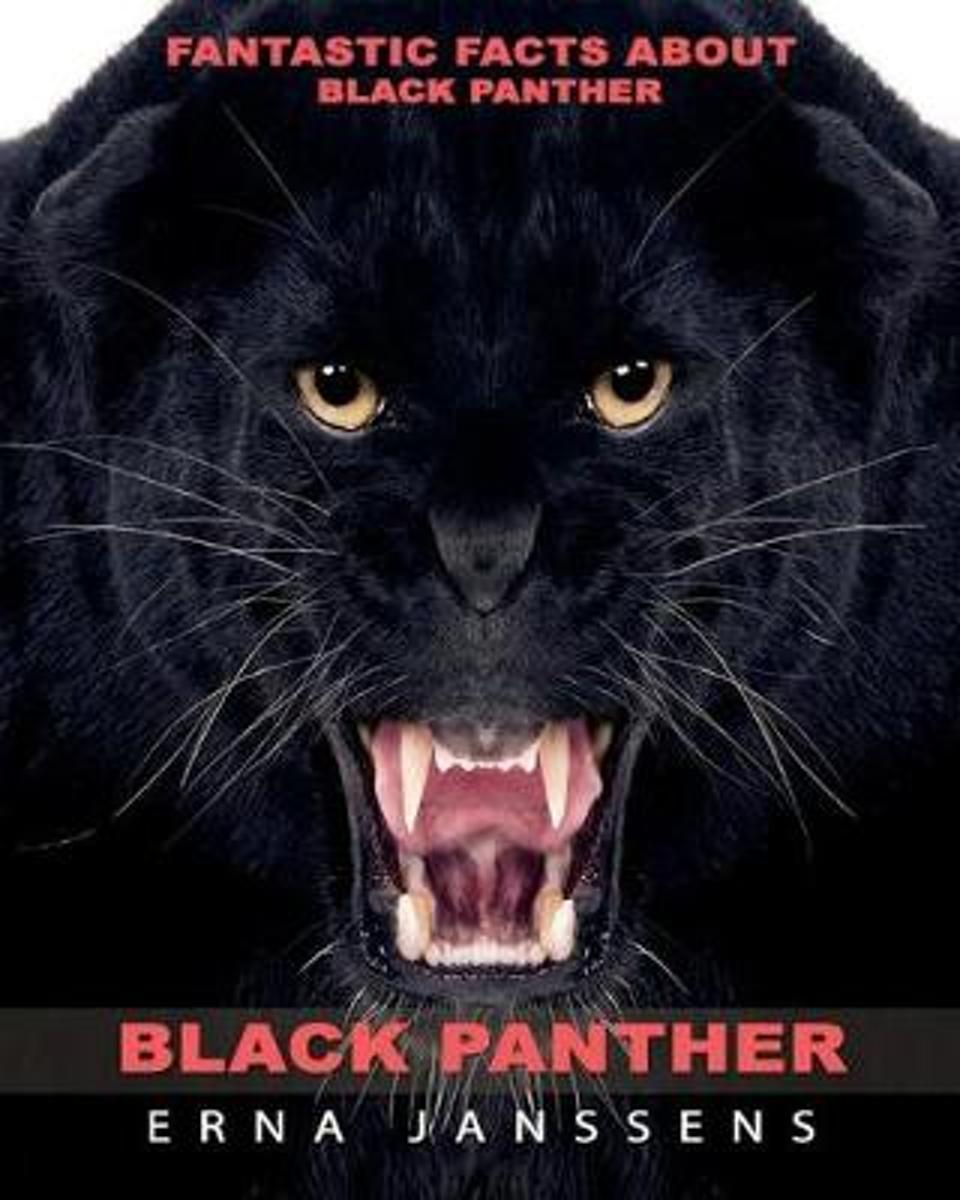 Fantastic Facts about Black Panther