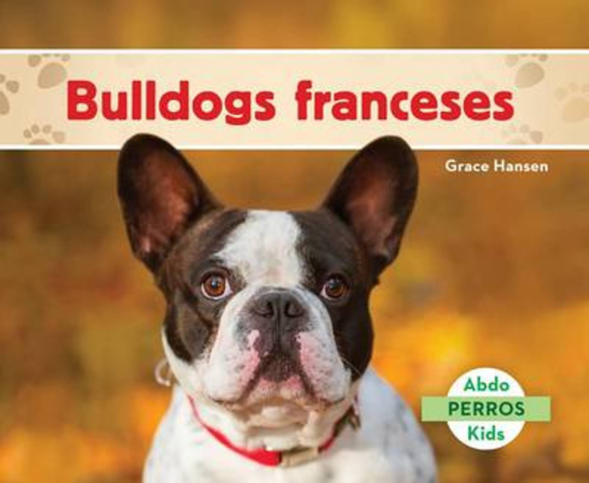 Bulldogs Franceses (French Bulldogs )