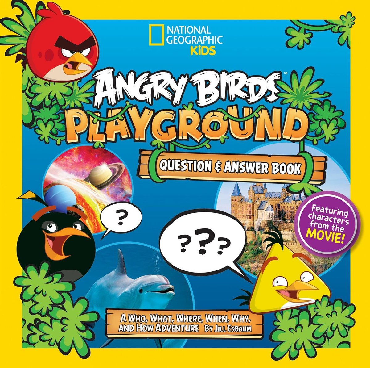 Angry Birds Playground: Question and Answer Book