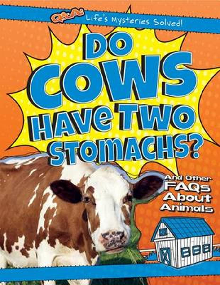 Do Cows Have Two Stomachs?