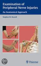 Examination Of Peripheral Nerve Injuries