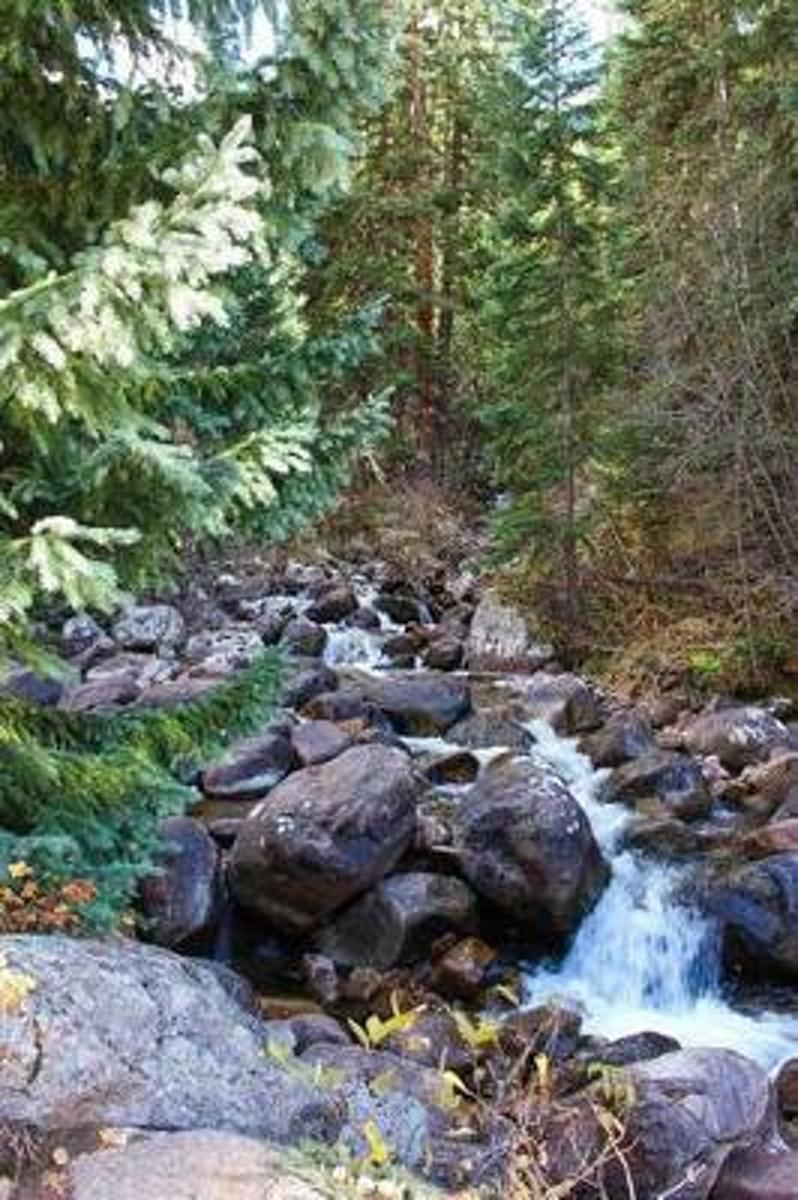 Mountain Stream in the Colorado Rocky Mountains Journal