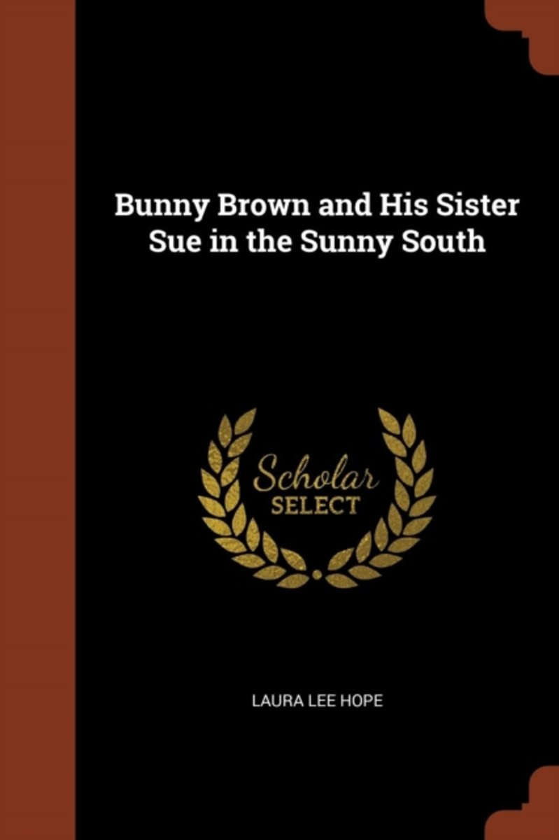 Bunny Brown and His Sister Sue in the Sunny South