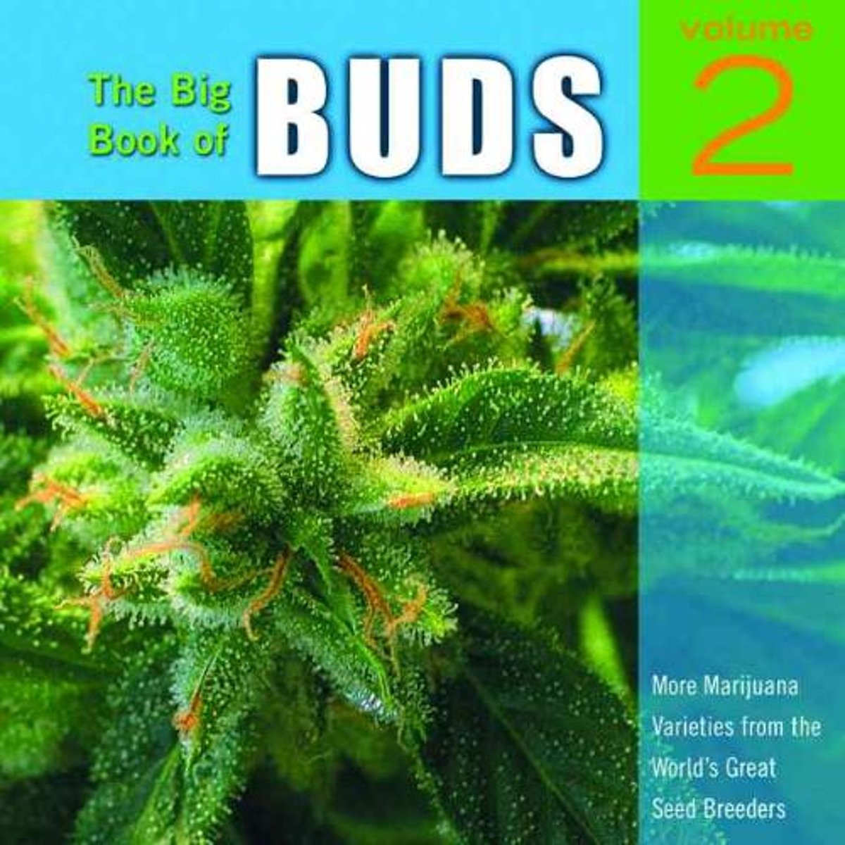 The Big Book Of Buds Vol. 2