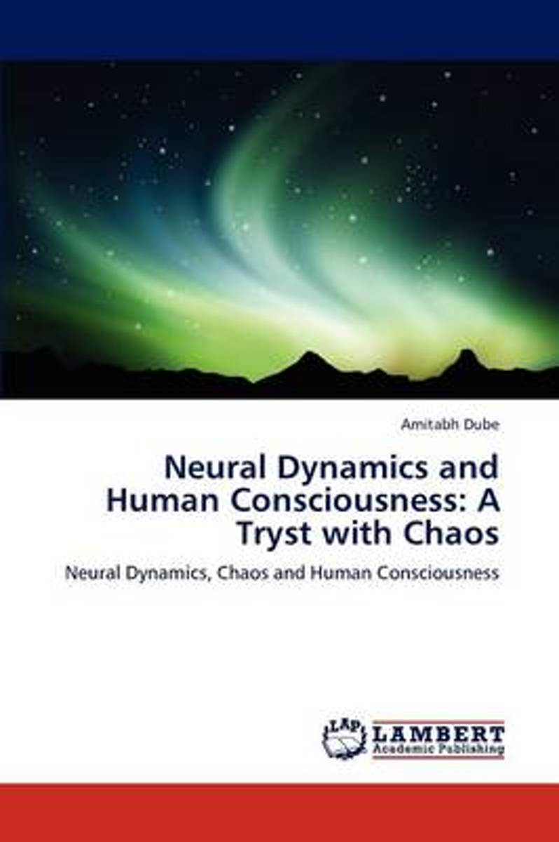 Neural Dynamics and Human Consciousness