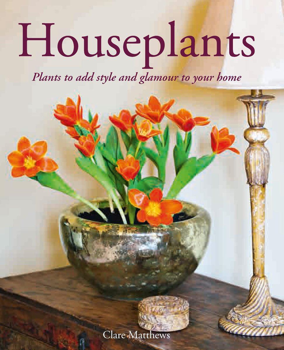 Houseplants: Plants to Add Style and Glamour to Your Home