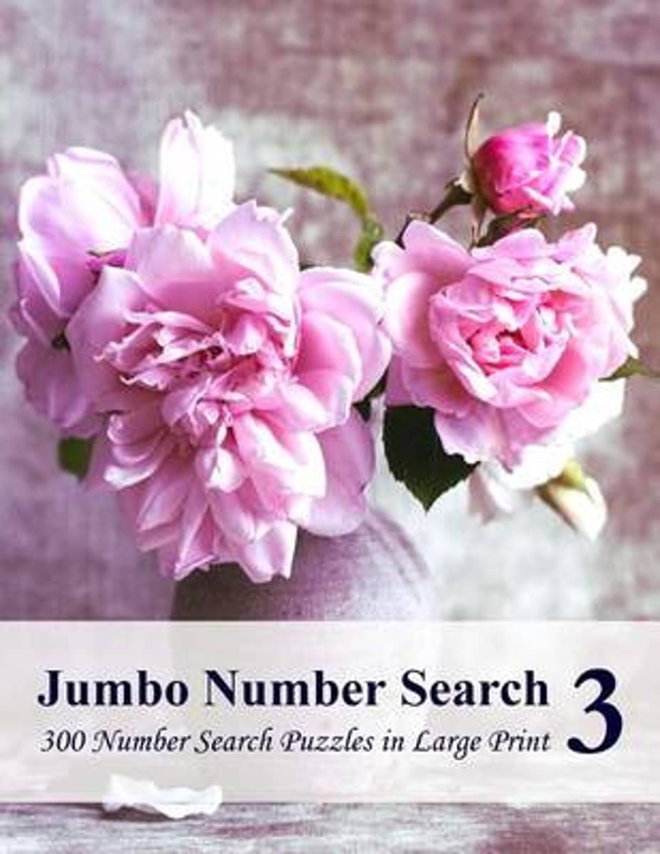 Jumbo Number Search 3