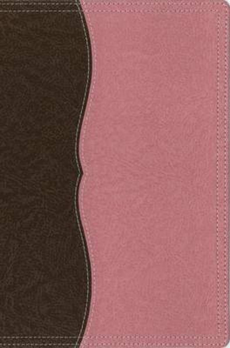 NIV, Thinline Reference Bible, Large Print, Leathersoft, Tan/Brown, Red Letter Edition