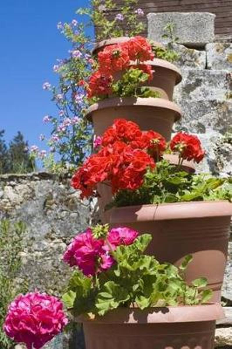 Terracotta Pots Brimming with Red and Pink Geranium Flowers Greece Journal