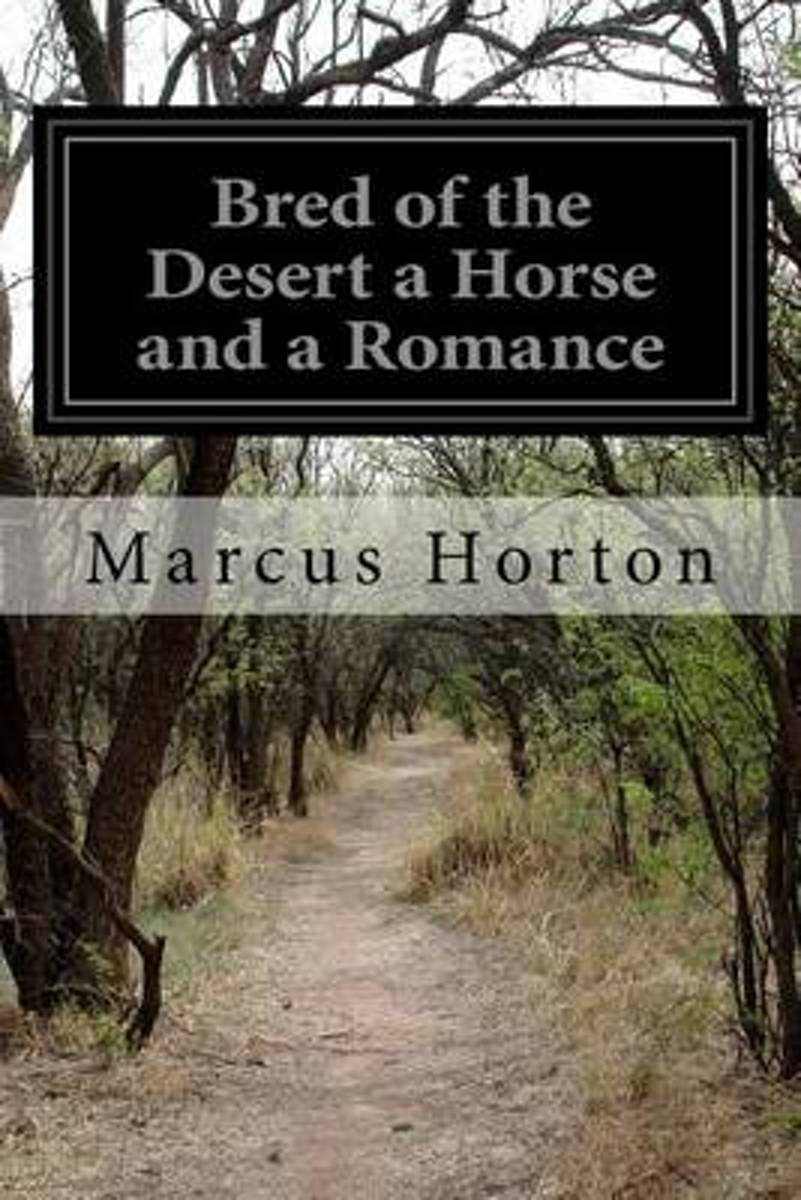 Bred of the Desert a Horse and a Romance