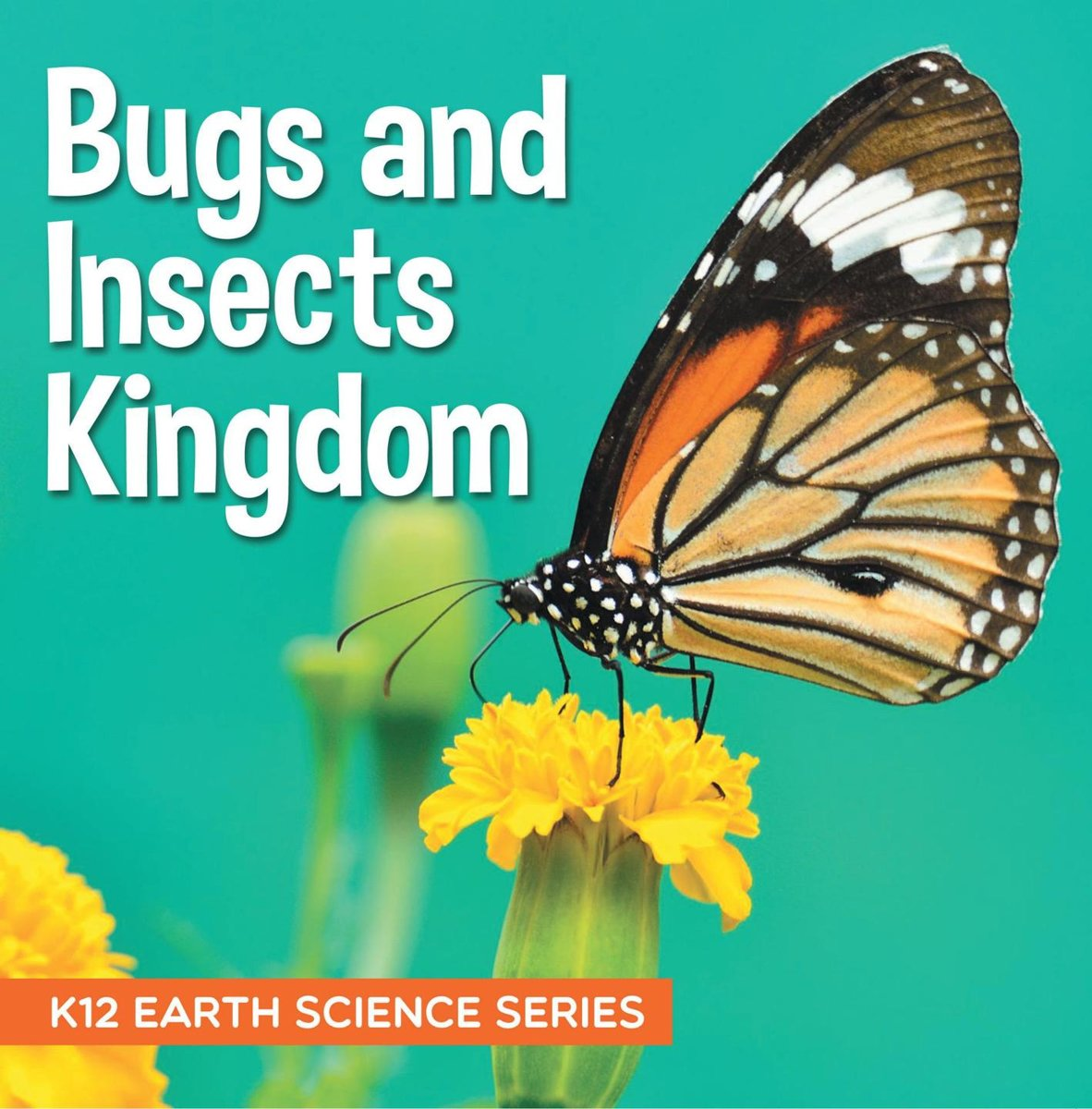 Bugs and Insects Kingdom : K12 Earth Science Series