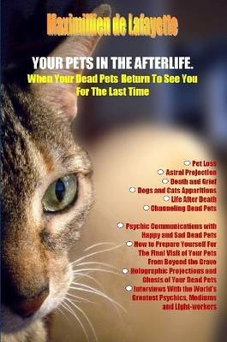 Your Pets in the Afterlife
