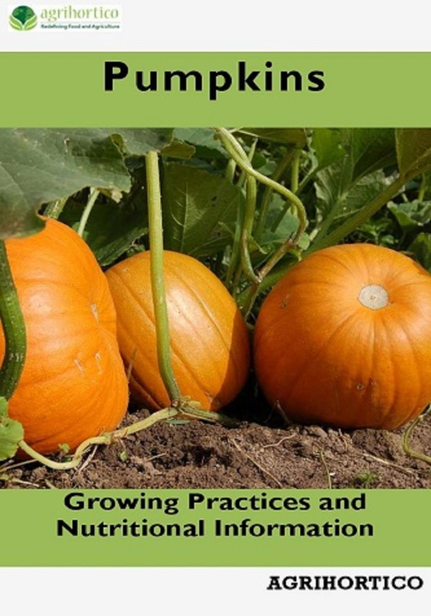 Pumpkins: Growing Practices and Nutritional Information