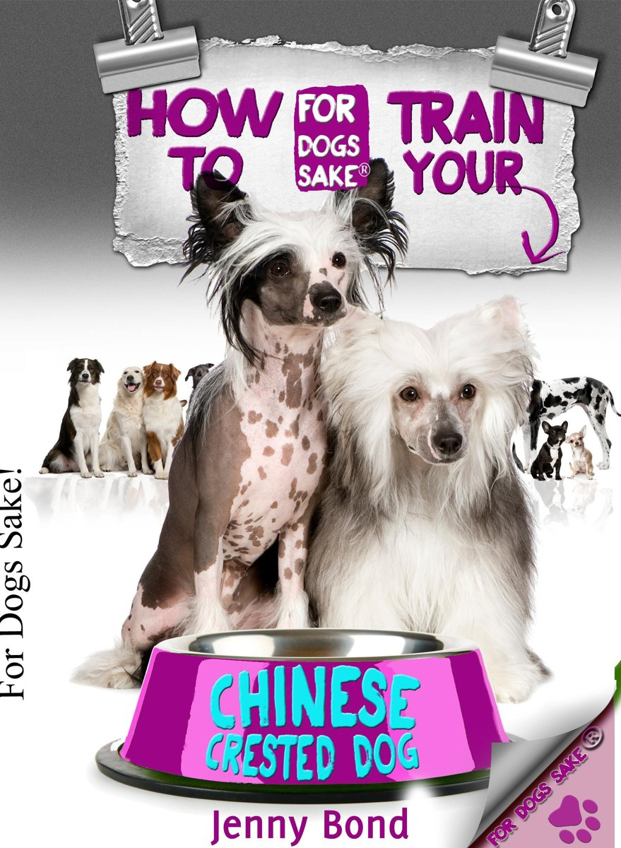 How To Train Your Chinese Crested Dog