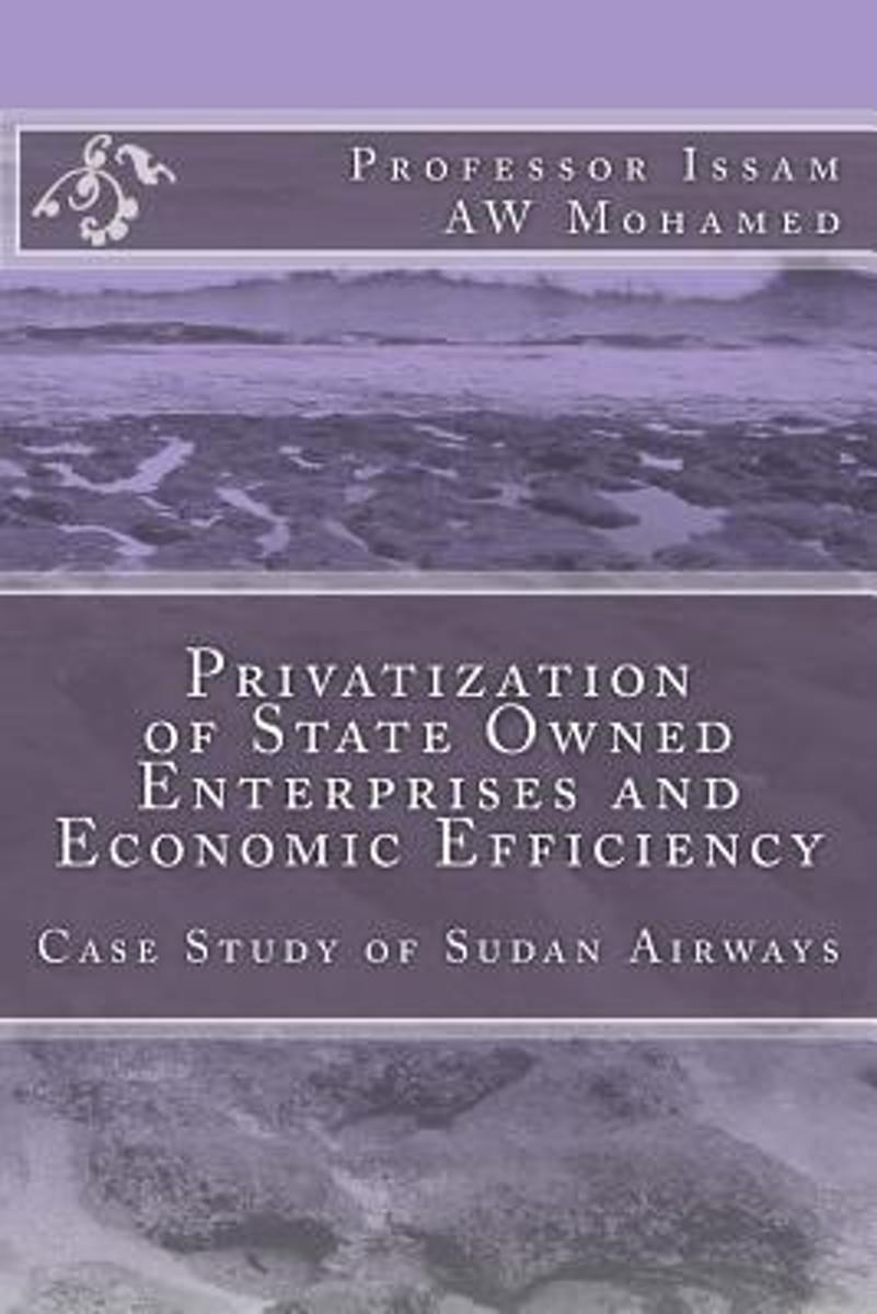Privatization of State Owned Enterprises and Economic Efficiency