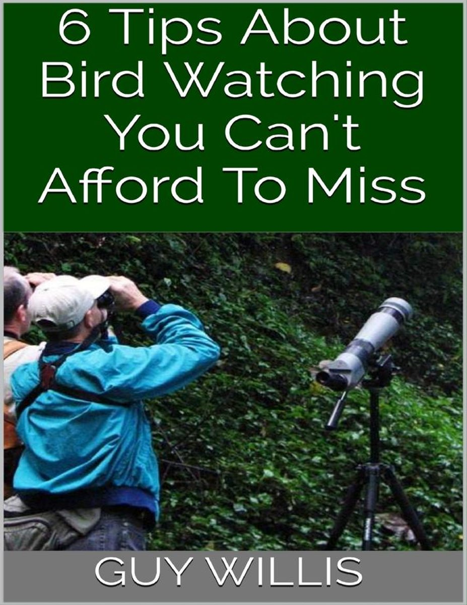 6 Tips About Bird Watching You Can't Afford to Miss