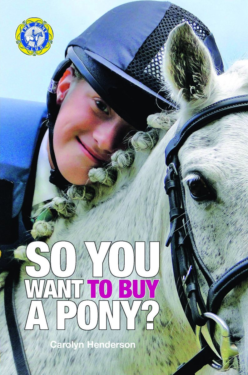 SO YOU WANT TO BUY A PONY
