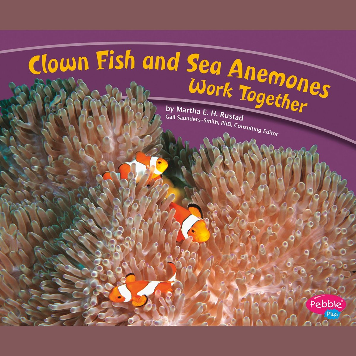 Clown Fish and Sea Anemones Work Together