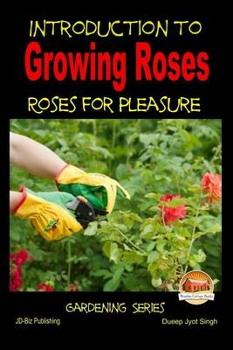 Introduction to Growing Roses - Roses for Pleasure