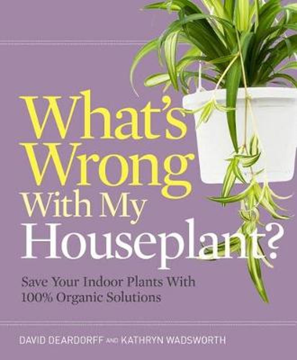 Whats Wrong with My Houseplant?