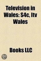 Television in Wales