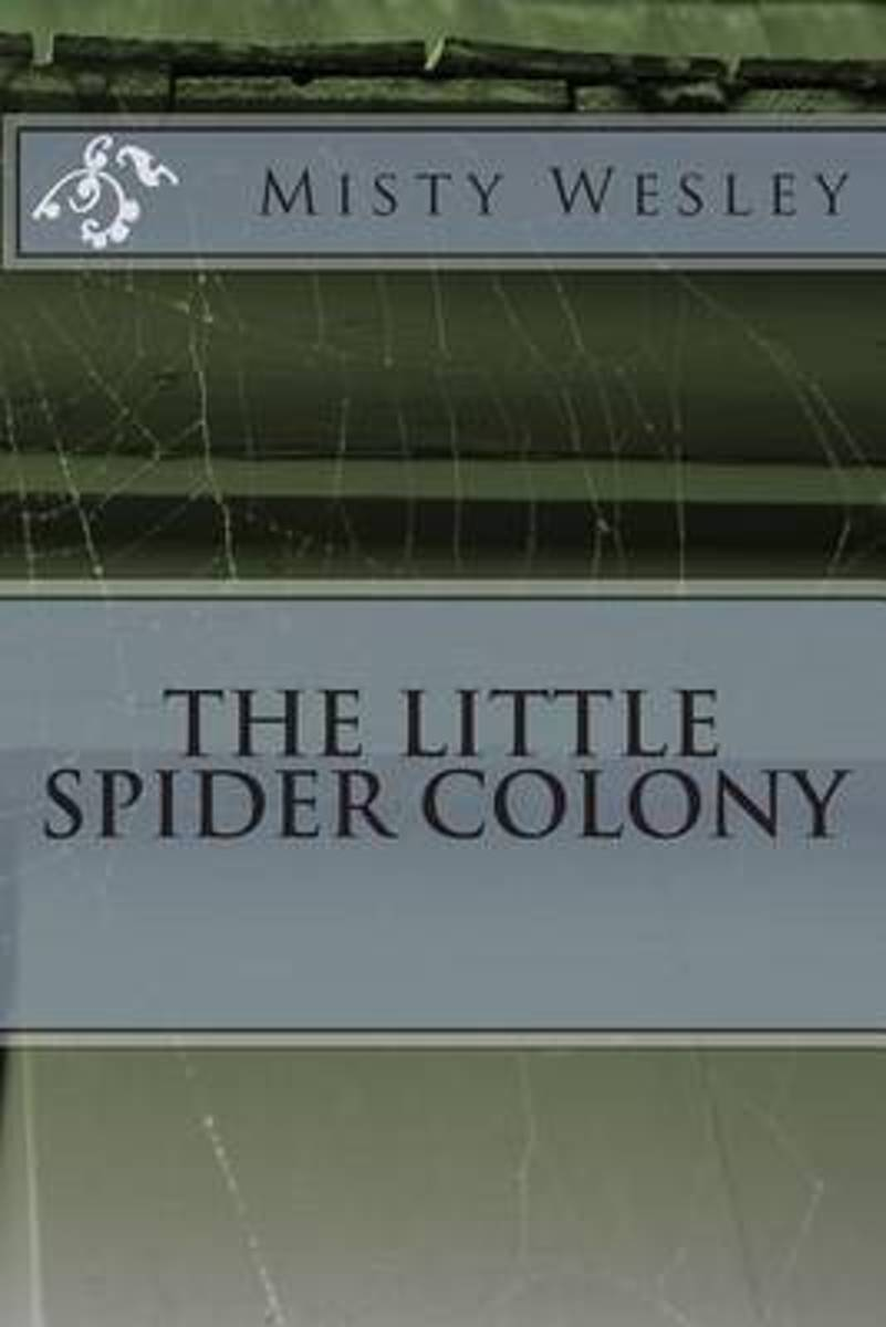 The Little Spider Colony