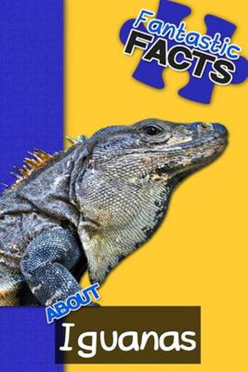 Fantastic Facts about Iguanas