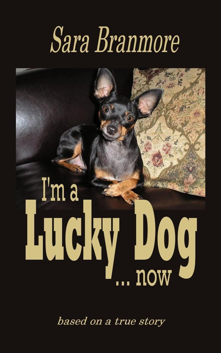 I'm A Lucky Dog... Now