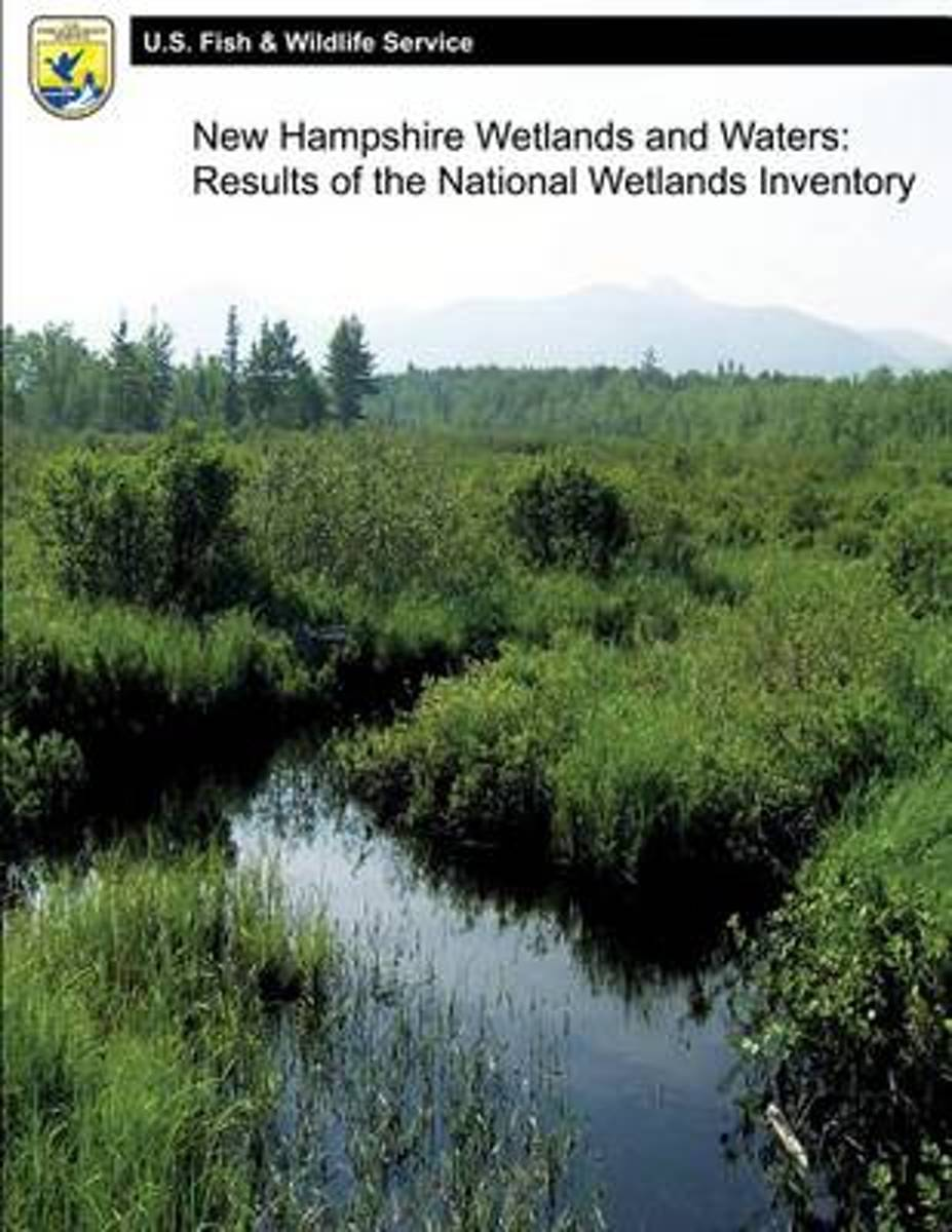 New Hampshire Wetlands and Waters