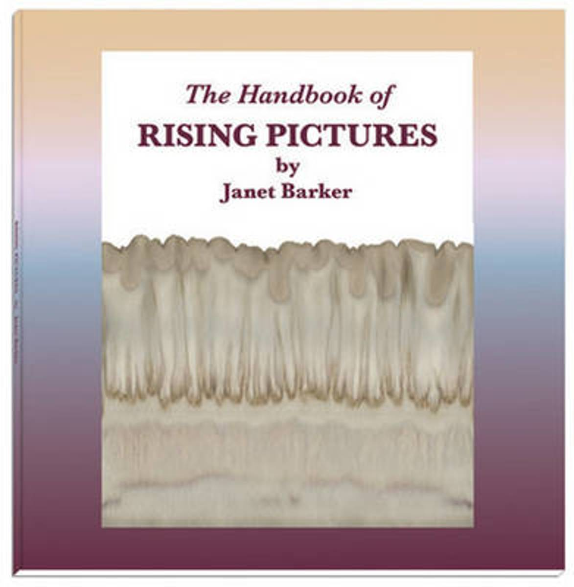 The Handbook of Rising Pictures
