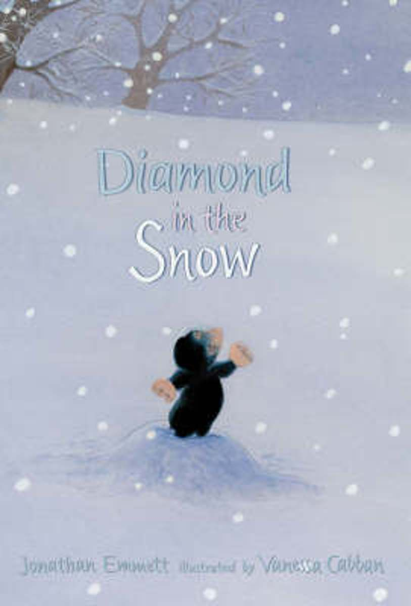 Diamond In The Snow