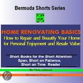 Home Renovating Basics