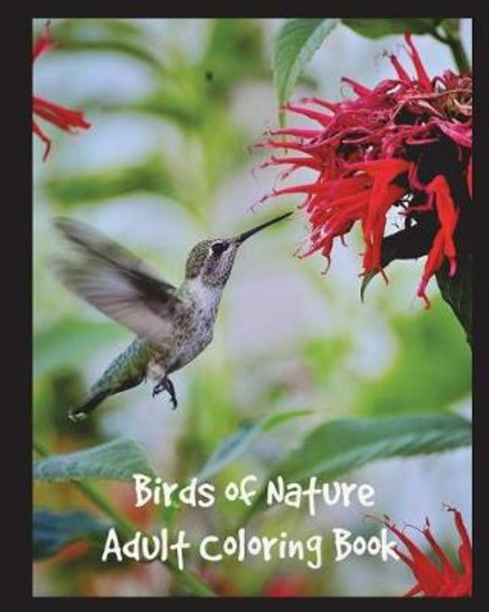 Birds of Nature Adult Coloring Book