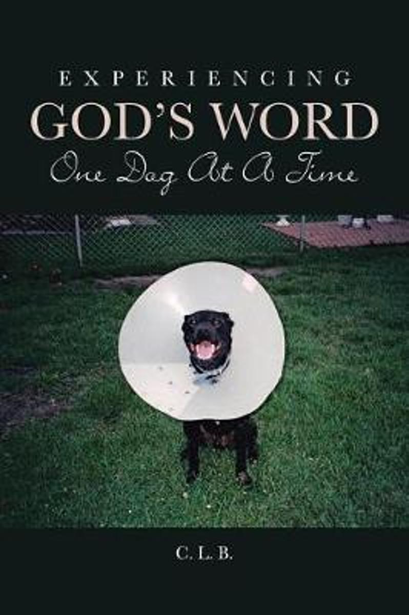 Experiencing God's Word One Dog at a Time