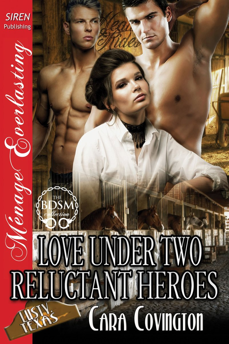 Love Under Two Reluctant Heroes