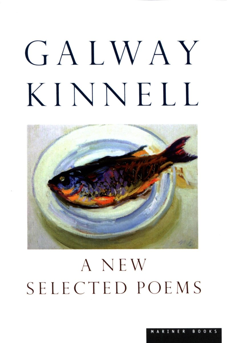 A New Selected Poems