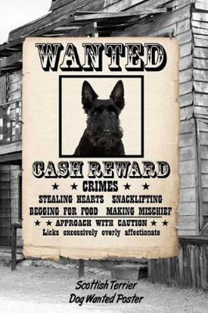 Scottish Terrier Dog Wanted Poster