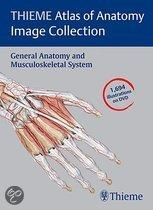 Thieme Atlas Of Anatomy Image Collection: General Anatomy And Musculoskeletal System