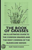 The Book Of Grasses - An Illustrated Guide To The Common Grasses, And The Most Common Of The Rushes And Sedges