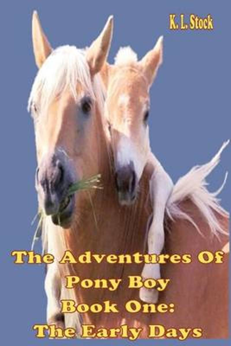 The Adventures of Pony Boy Book One