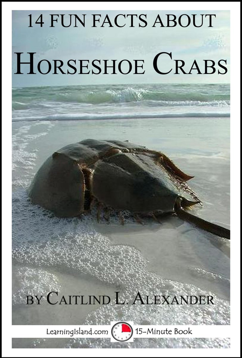 14 Fun Facts About Horseshoe Crabs: A 15-Minute Book