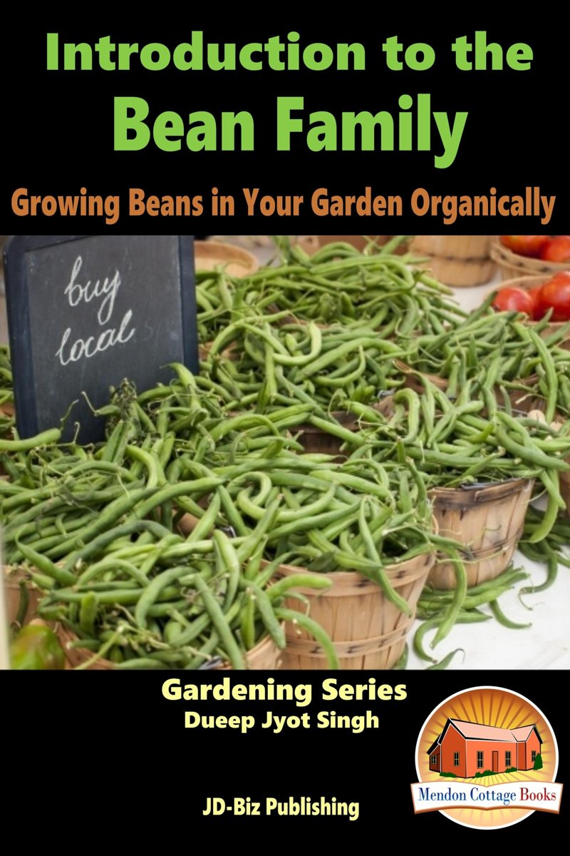Introduction to the Bean Family: Growing Beans in Your Garden Organically