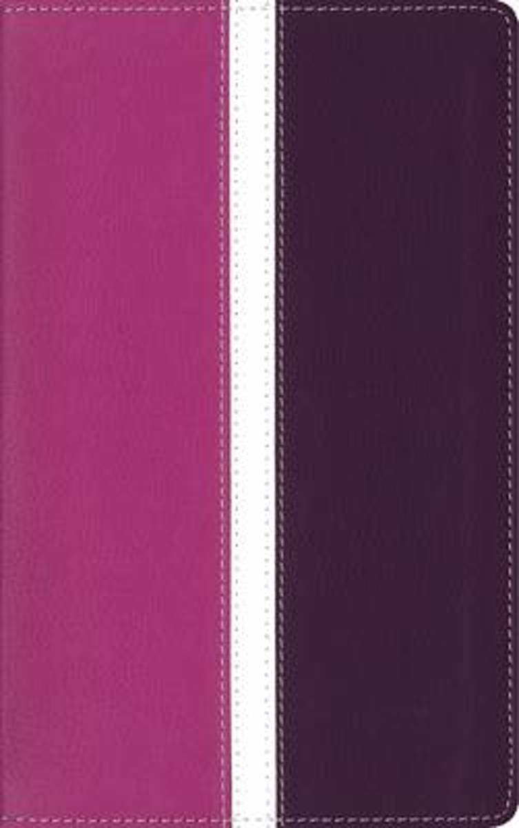 Amplified Holy Bible, Leathersoft, Pink/Purple, Indexed