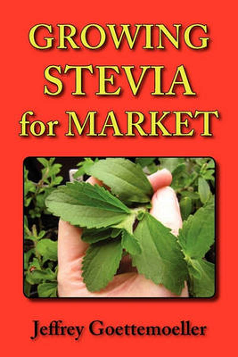 Growing Stevia for Market
