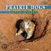 Prairie Dogs: Tunnel Diggers