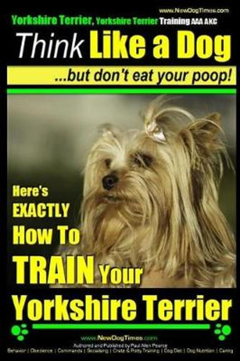 Yorkshire Terrier Dog Training - Think Like a Dog But Don't Eat Your Poop! - Yorkshire Terrier Breed Expert Training