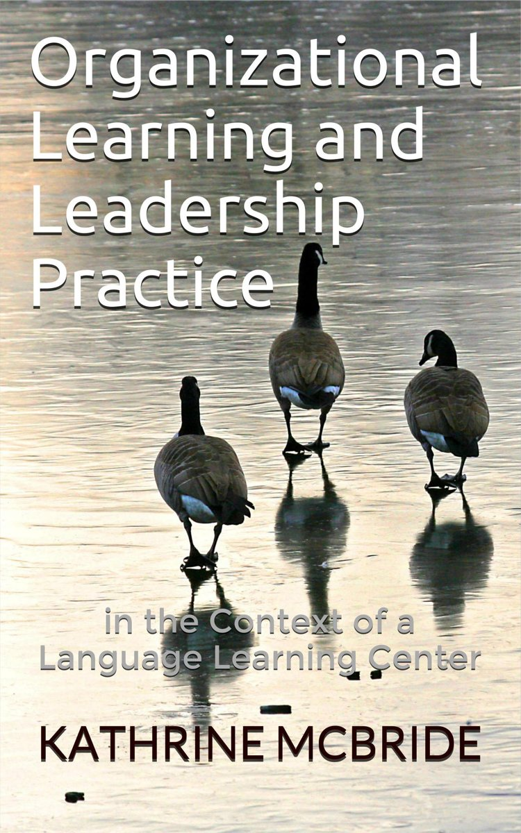 Organizational Learning and Leadership Practice