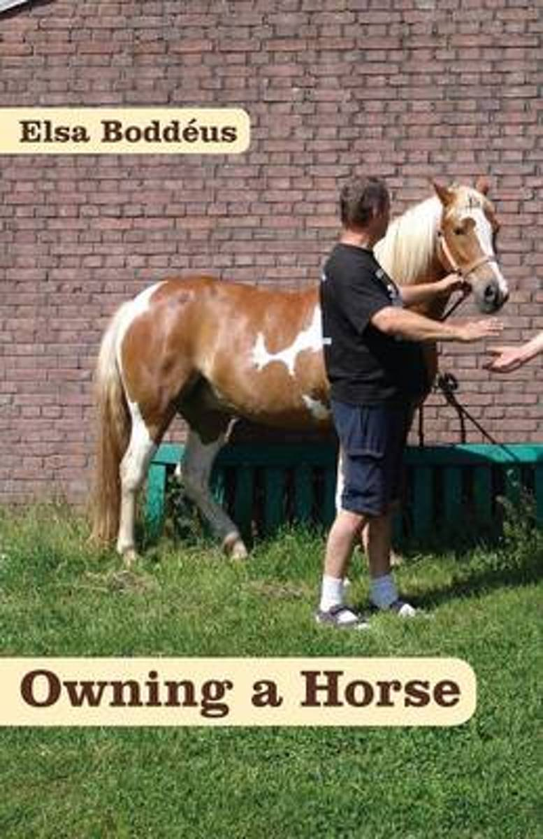 Owning a Horse