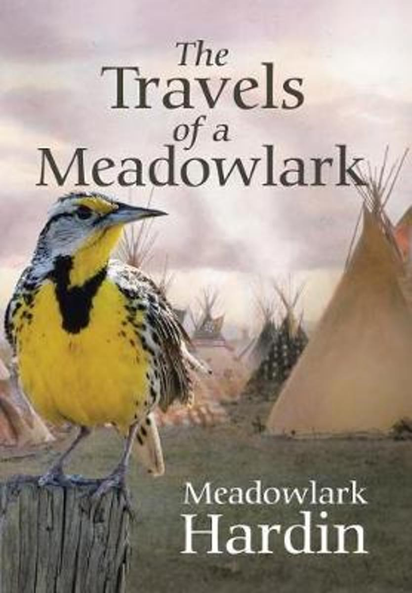 The Travels of a Meadowlark